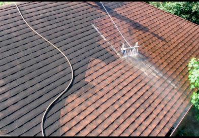 Comment éradiquer les mousses de votre toit ?