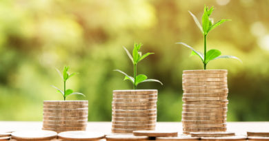 Pourquoi investir en SCPI Pinel ?