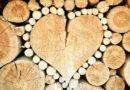 Pour votre bardage, choisissez le bois !